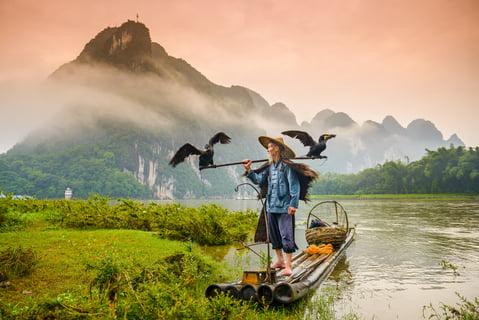 A traditional cormorant fisherman works on the Li River Yangshuo, China.